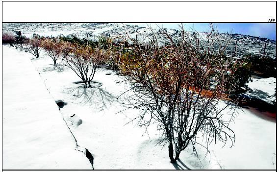 uae-snow